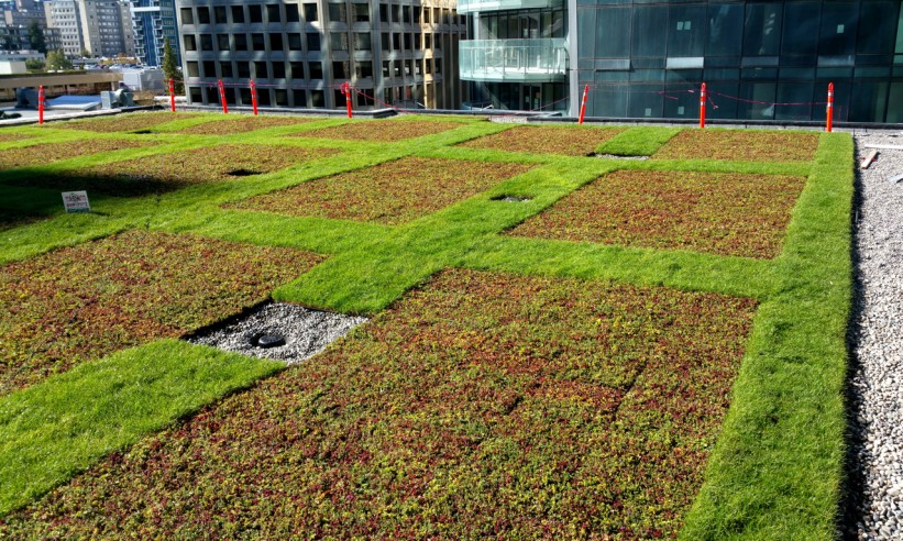 Extensive Green Roofs Zinco Canada